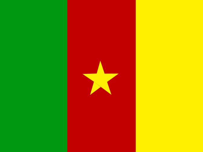 Hugo Broos ontslagen bij Kameroen
